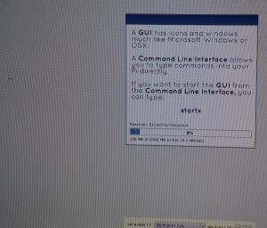 Installing Raspbian.